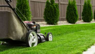 Professional gardening services