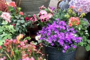 In-the-Garden-Containers-07