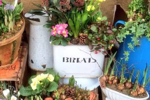 In-the-Garden-Containers-12