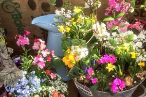 In-the-Garden-Containers-13
