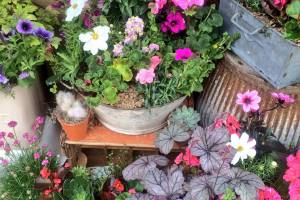 In-the-Garden-Containers-15