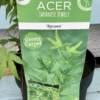 Acer Palmatum plant tag